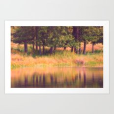 Pastel Reflections Art Print