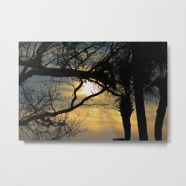 Sunrise Trees Metal Print