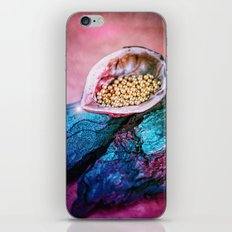 IN A NUTSHELL iPhone & iPod Skin