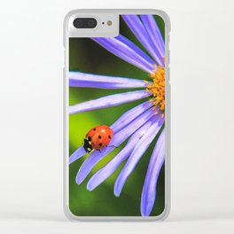 The runway of a ladybird Clear iPhone Case
