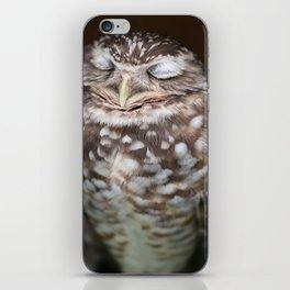 Sleeping Owl iPhone Skin