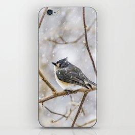 Snowy Titmouse iPhone Skin
