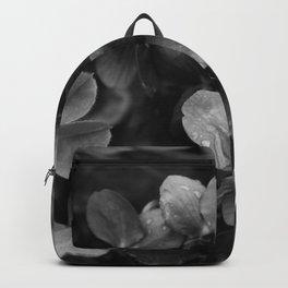 Viola in bw Backpack