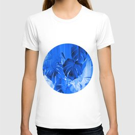 A Philodendron in blue T-shirt