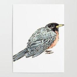 Grey Watercolor Bird Poster