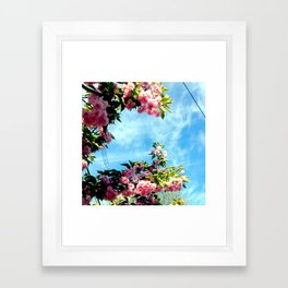 Nature 4 Framed Art Print