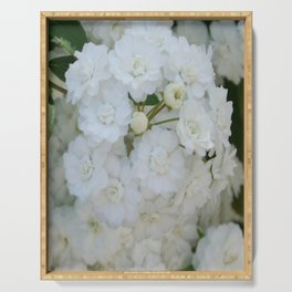 Deutzia Pure and Simple Serving Tray