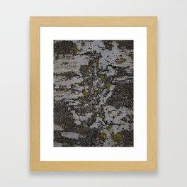 Bark IV Framed Art Print