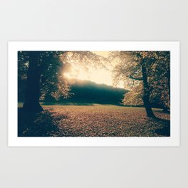 autumn comes and leafs Art Print