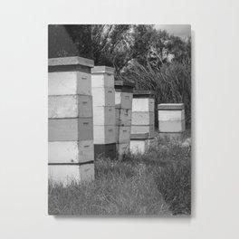 Bee Hives BW Metal Print