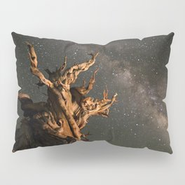 Milky Way over an Ancient Bristlecone Pine  Pillow Sham