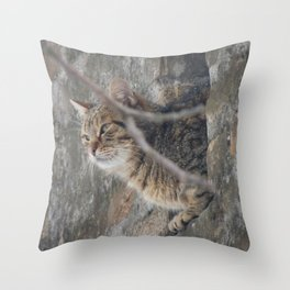 Cat view Throw Pillow