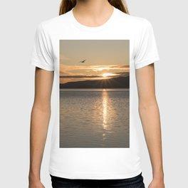 'Jonathon Livingston' T-shirt