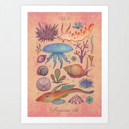 Aequoreus vita II / Marine life II Art Print