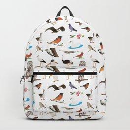 Various Birds Backpack