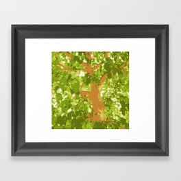 Mulberry-tree, Strawberry tree, mulberry, strawberry, tree, autumn, fall, leaves, leaf, xmas, holiday, holidays, green, Framed Art Print