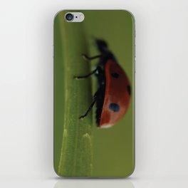 Ladybird on a Flower, macro photography, home, still life, fine art, animal love, nature photo iPhone Skin
