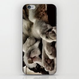 Cat get up right meow iPhone Skin