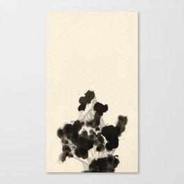 Sedate Two Canvas Print