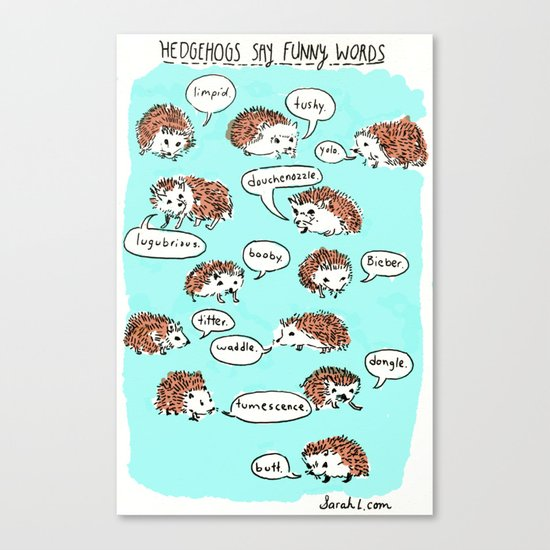 Hedgehogs Say Funny Things Canvas Print