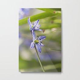 Une Fleur Bleue Metal Print