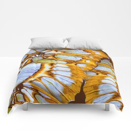 Colden Colors – Wing Series Comforters