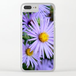 Hardy Blue Aster Flowers Clear iPhone Case