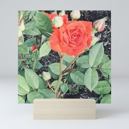 June Rose Mini Art Print