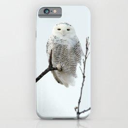 Snowy in the Wind (Snowy Owl) iPhone Case