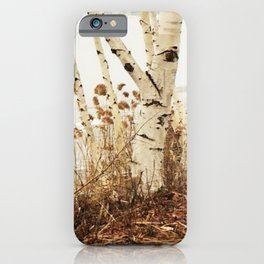 Autumn Birches by the Lake iPhone Case