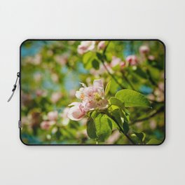 Apple Blossoms (1) Laptop Sleeve