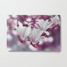 Magnolia 232 Metal Print