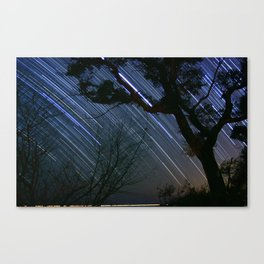Late Winter Southern Sky seen from South Mississippi Canvas Print