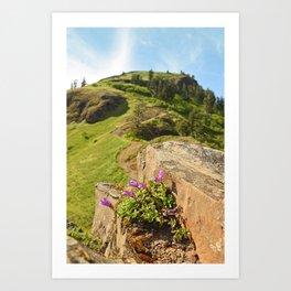 Saddle Mountain Oregon Coast Nature Northwest Forest Landscape Hiking Art Print