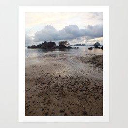 Mud Beach Art Print