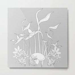 Underwater Plants, Seashell Black and White Fine Vector Illustration Metal Print