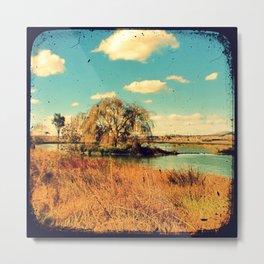 Willow Tree - Through The Veiwfinder (TTV) Metal Print