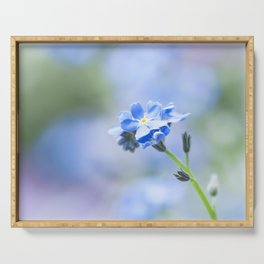 Forget-me-not in LOVE - Springflower Flowers Floral Serving Tray