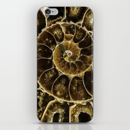 Detailed Fossil iPhone Skin