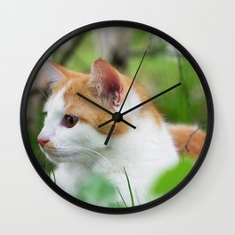 My sweet Tiger Wall Clock