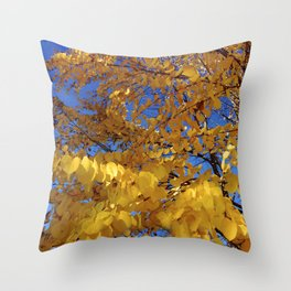 Fall Colors Throw Pillow