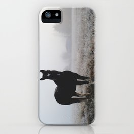 Frosty Klamath Horse iPhone Case