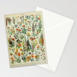Vintage Scientific French Language Encyclopedia Lithograph Flowers  Stationery Cards