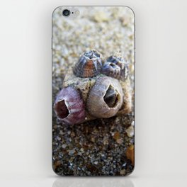 Shelter iPhone Skin