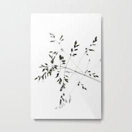a delicate MOMENT Metal Print
