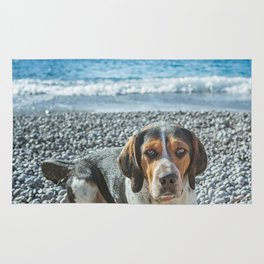 dog on the beach Rug