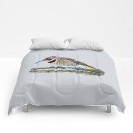 Fancy Fellow: Northern Flicker Woodpecker Comforters