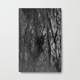Bark of Tree Metal Print