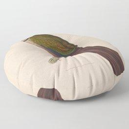 Rufous vented Ground Cuckoo5 Floor Pillow