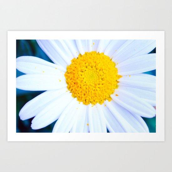 SMILE - Daisy Flower #2 Art Print